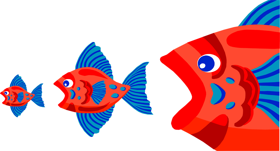 Illustration of three red fish eating each other : Free Stock Photo