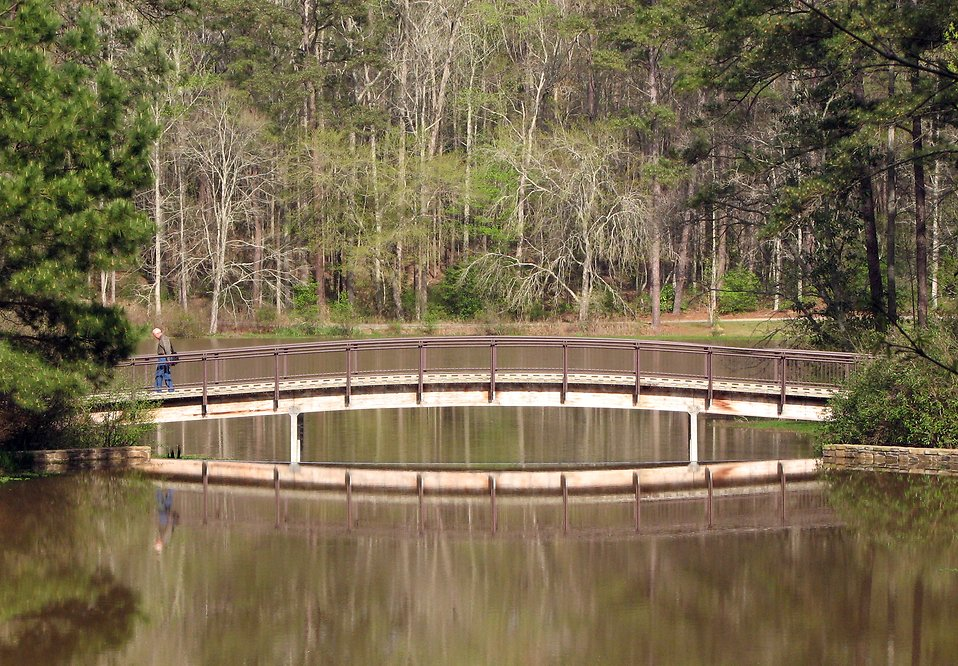 A man walking across a bridge over a pond : Free Stock Photo