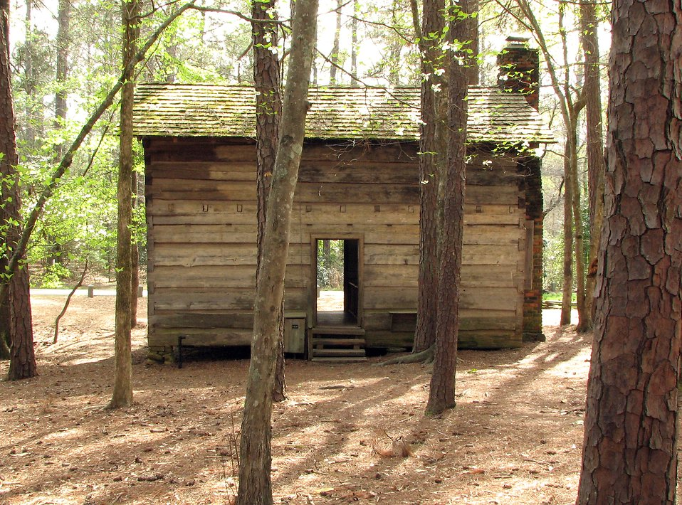 An old wooden log cabin in the woods : Free Stock Photo