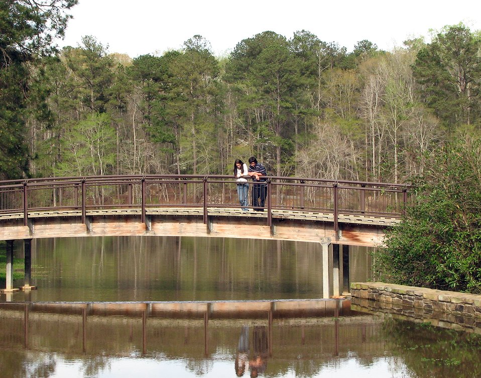 A man and woman standing on a bridge over a pond : Free Stock Photo