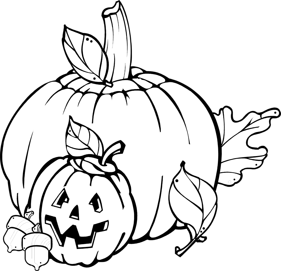 Illustration of pumpkins and a jack-o-lantern : Free Stock Photo