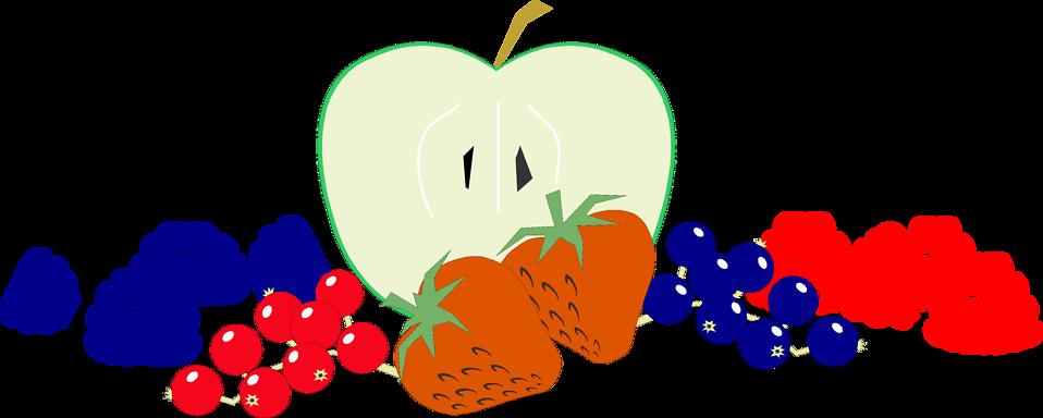 Illustration of various fruit : Free Stock Photo