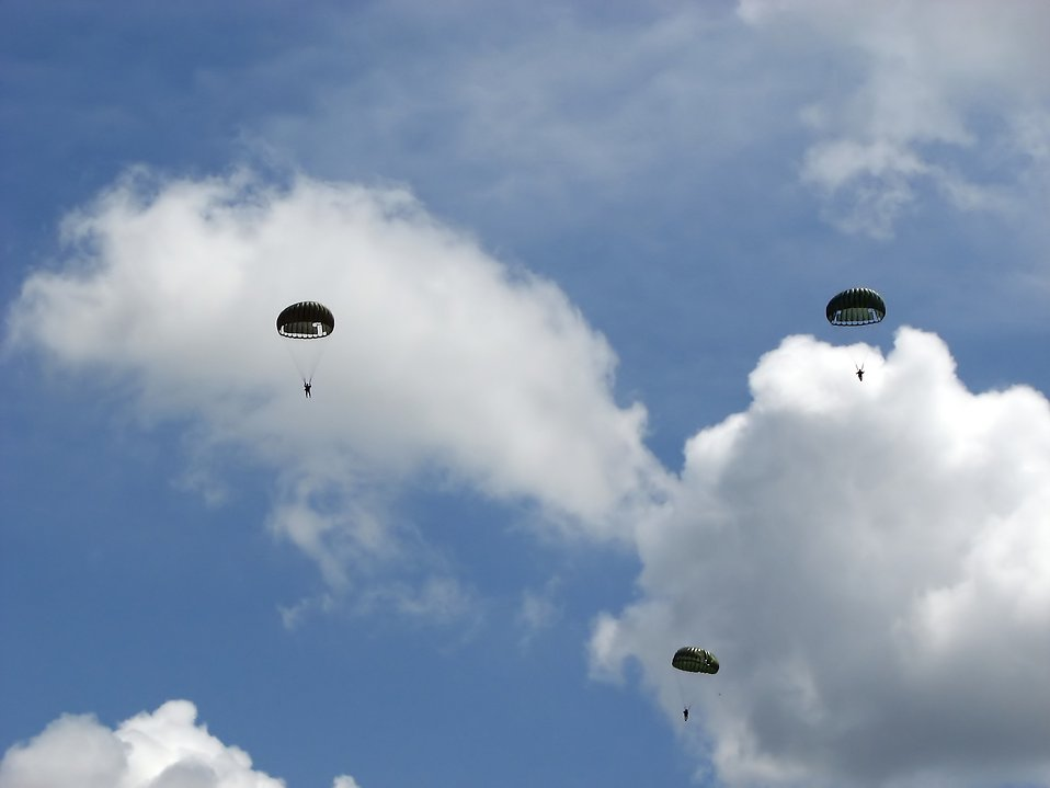 Soldiers parachuting in the sky : Free Stock Photo