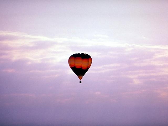 A hot air balloon flying in the sky : Free Stock Photo