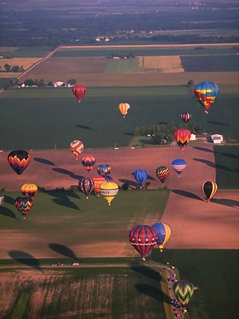 Hot air balloons flying over a field.