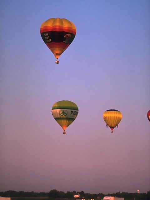 Hot air balloons flying in the sky : Free Stock Photo
