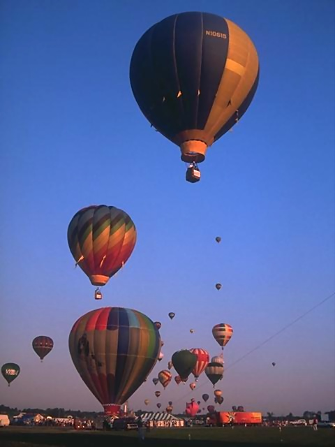 Hot air balloons taking off from a field : Free Stock Photo