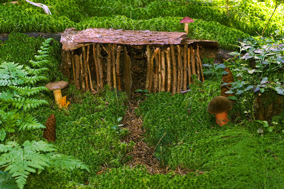 Close-up of a dwarf house : Free Stock Photo