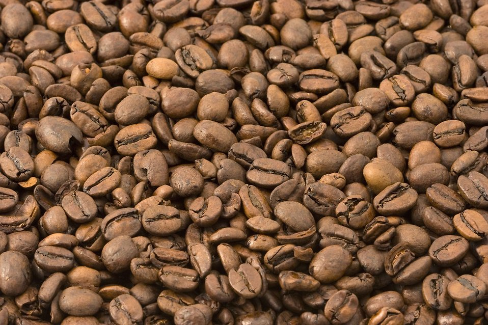 Close-up of coffee beans : Free Stock Photo