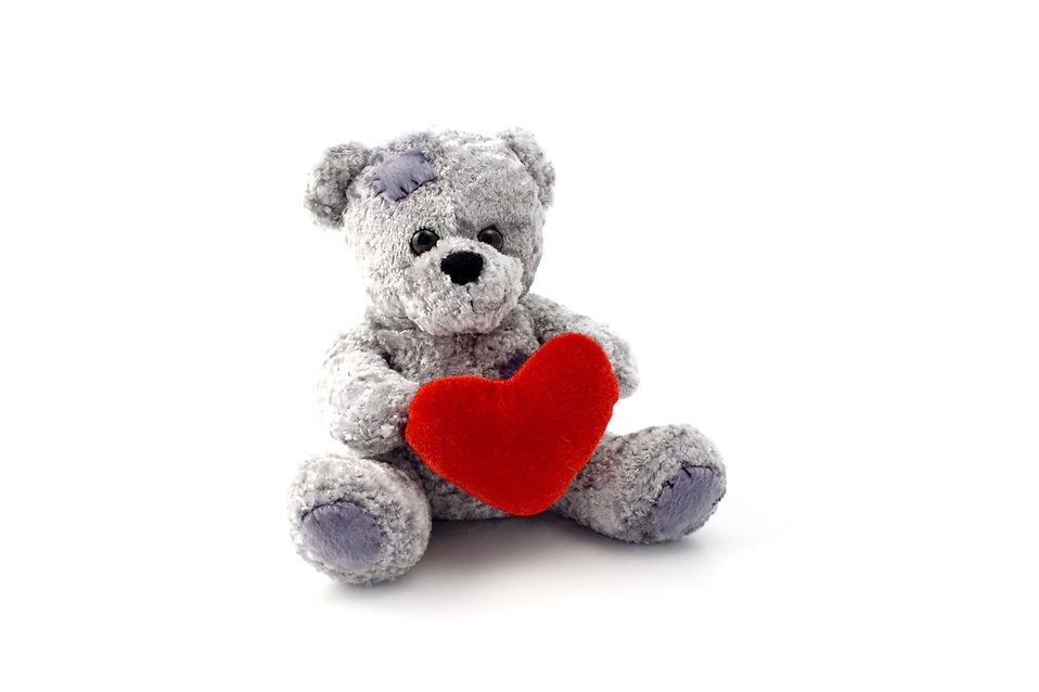 An isolated teddy bear with a heart : Free Stock Photo