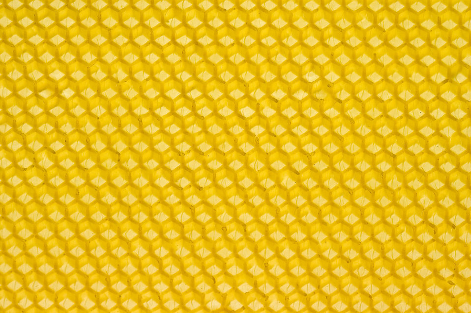 A Yellow Honeycomb Free Stock Photo