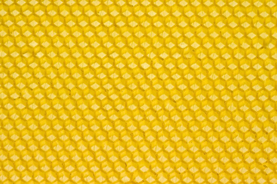 A yellow honeycomb : Free Stock Photo