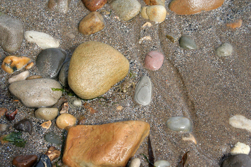 Pebbles on the beach : Free Stock Photo