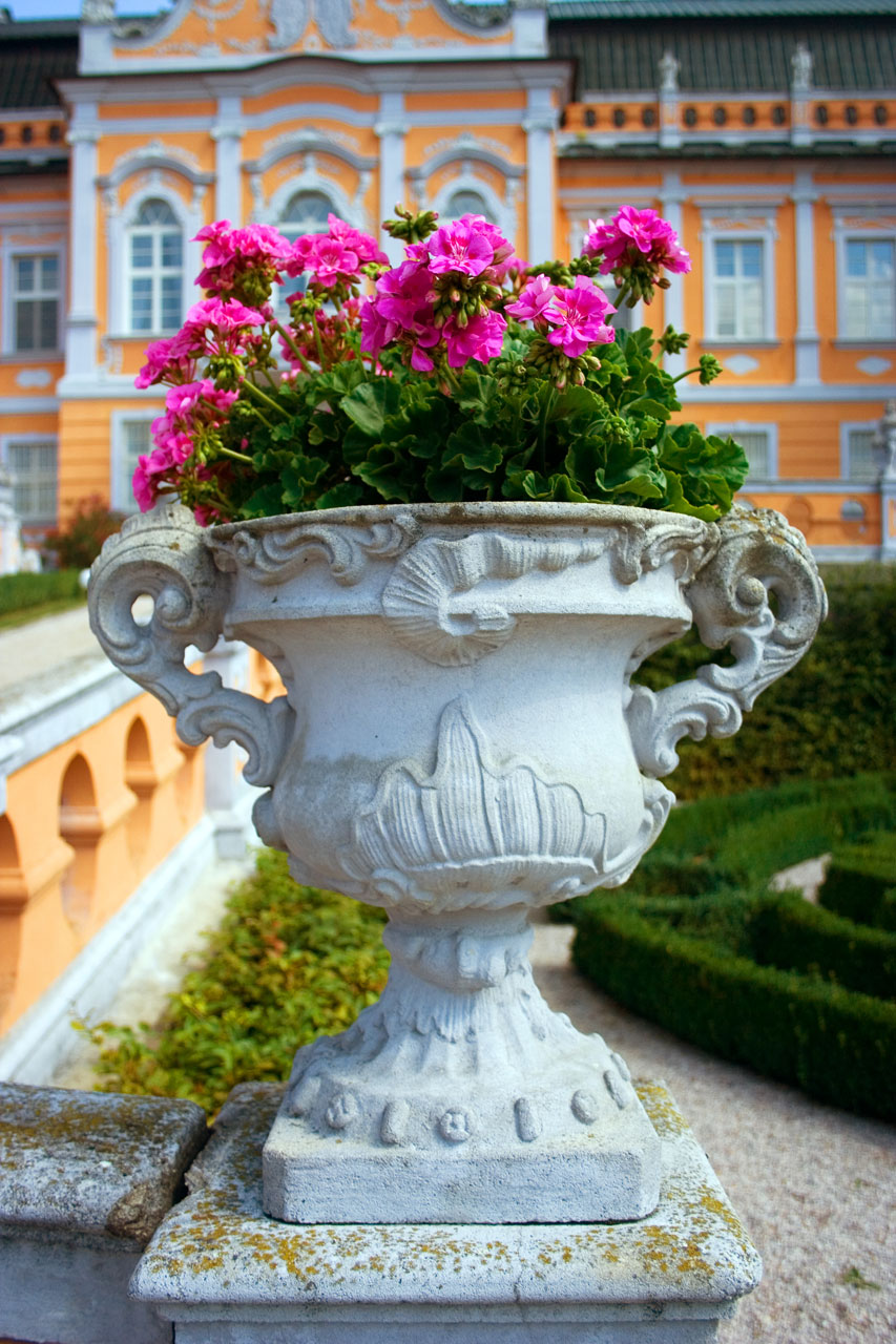 Purple flowers in a vase outside of a castle : Free Stock Photo