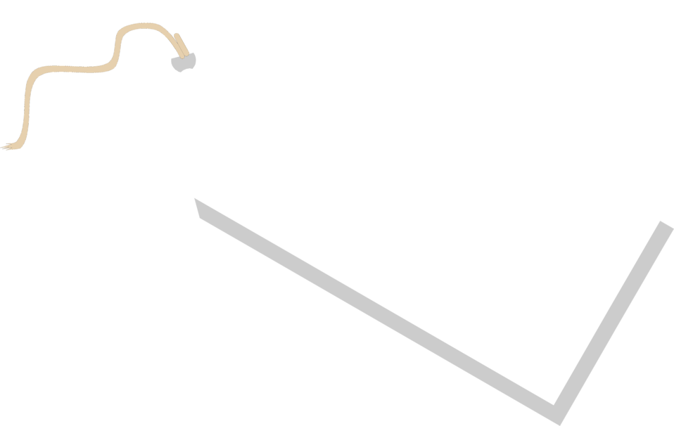 Illustration of a blank tag.
