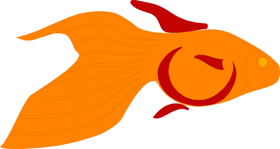 Illustration of a goldfish : Free Stock Photo