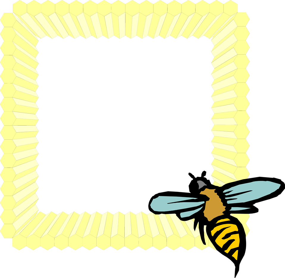 Illustration of a blank honeycomb frame with a bee : Free Stock Photo