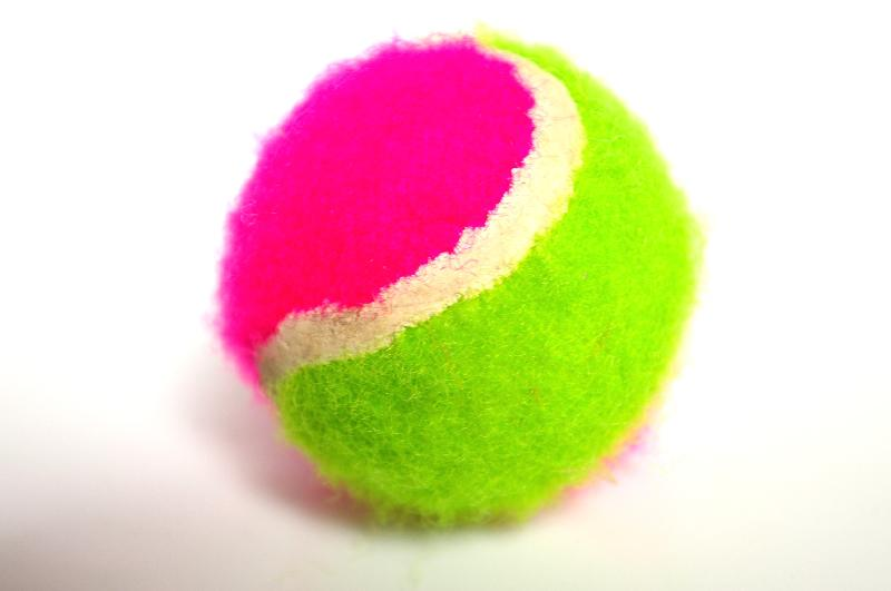 A pink and green tennis ball isolated on a white background : Free Stock Photo