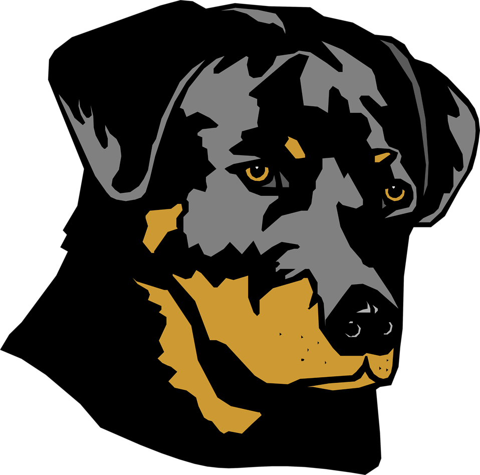 Illustration of a rottweiler dog head : Free Stock Photo