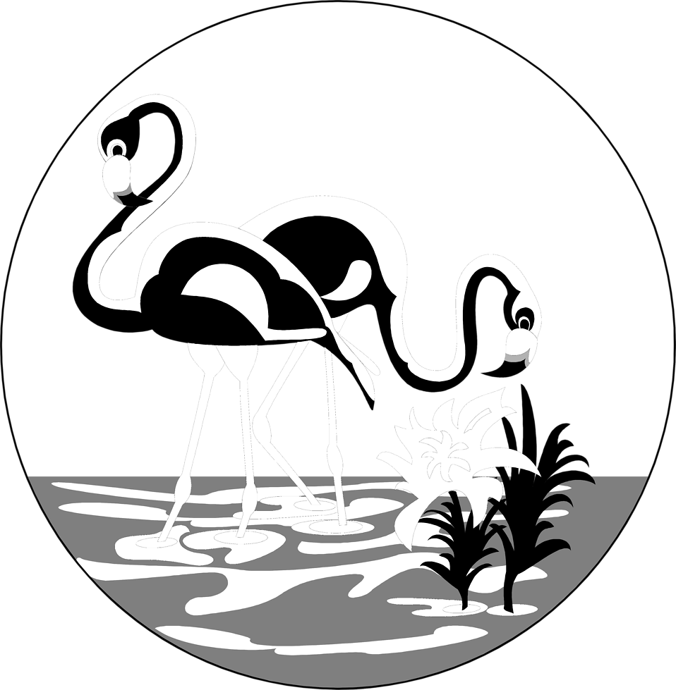 Illustration of flamingos standing in the water : Free Stock Photo