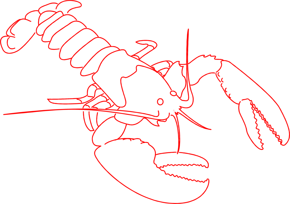 Illustration of a red lobster outline : Free Stock Photo