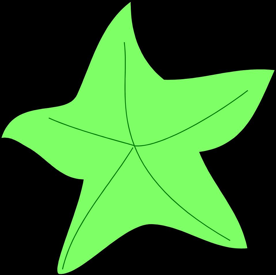Illustration of a green starfish : Free Stock Photo