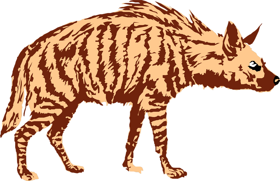Illustration of a hyena : Free Stock Photo