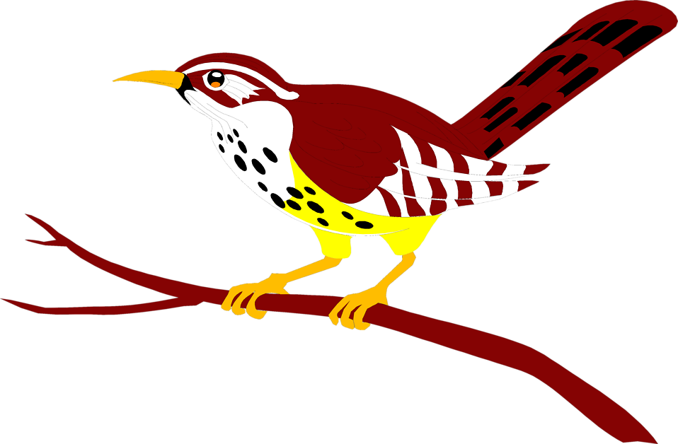 Illustration of a red bird perched on a branch : Free Stock Photo