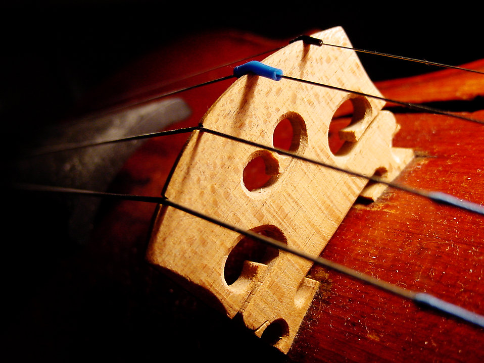 Close-up of a violin bridge : Free Stock Photo
