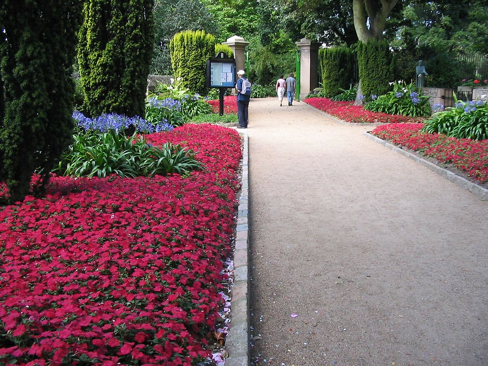 A path in a park with red flowers : Free Stock Photo