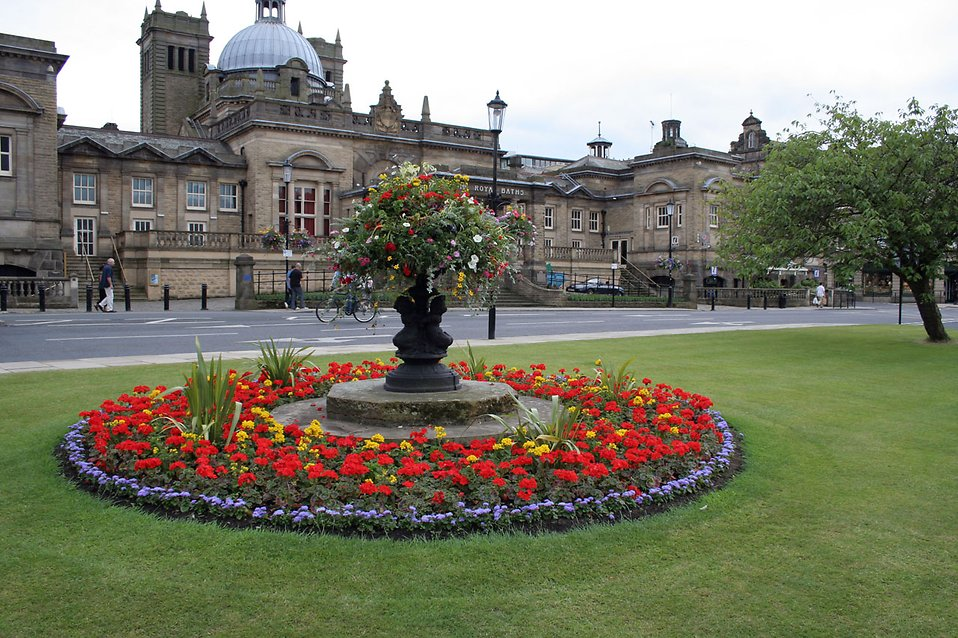 Flowers in blossom in front of Turkish baths in Harrogate : Free Stock Photo