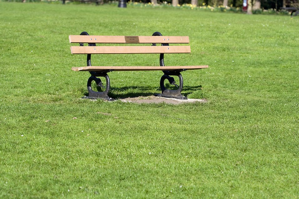 A park bench in the grass : Free Stock Photo