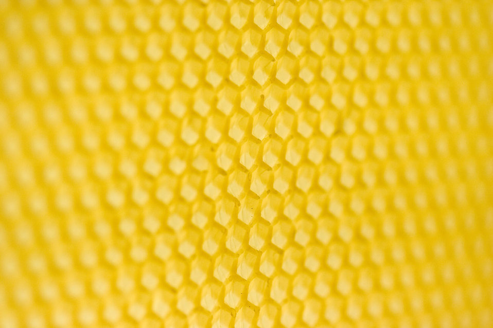 Close-up of a honeycomb : Free Stock Photo