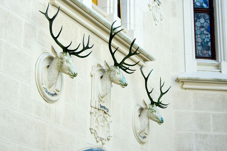 Stone deer busts on a castle wall : Free Stock Photo