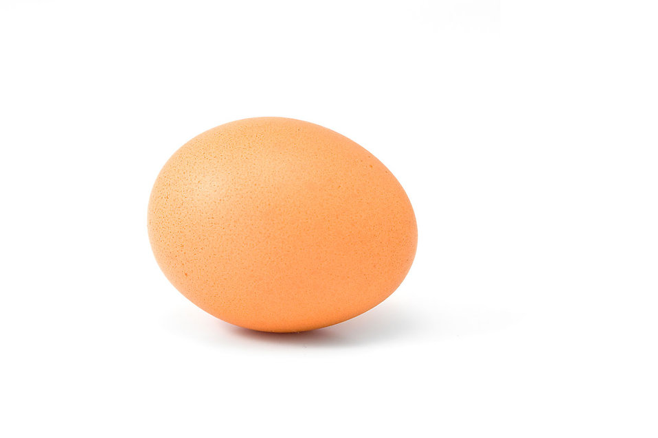 A brown egg isolated on a white background : Free Stock Photo
