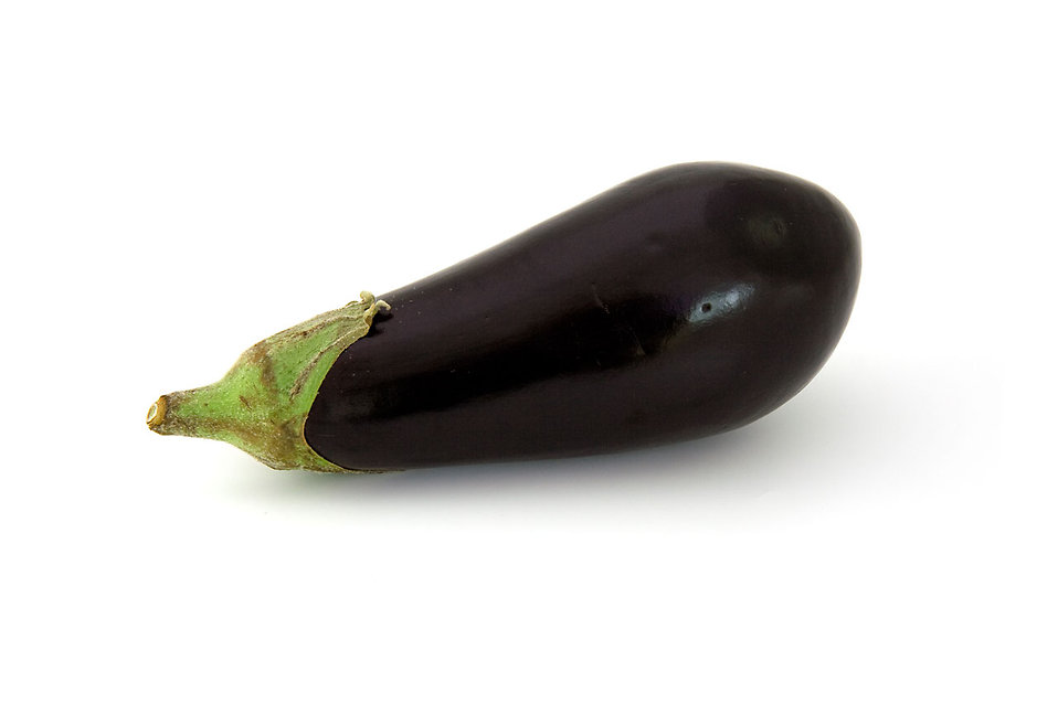 An eggplant isolated on a white background : Free Stock Photo