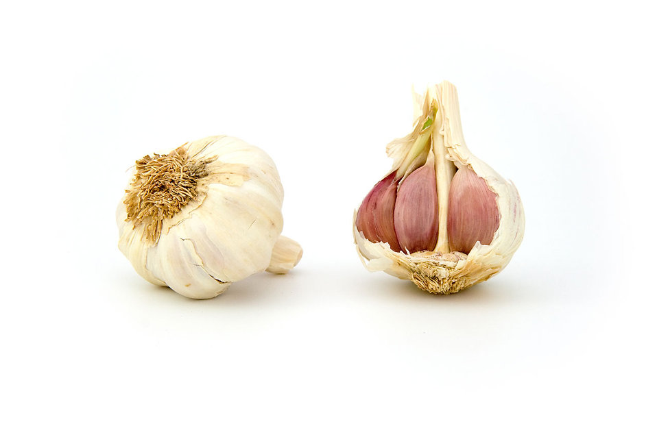 Onions isolated on a white background : Free Stock Photo