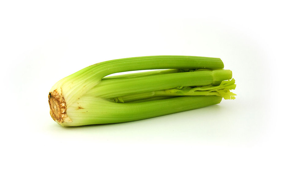 Celery isolated on a white background : Free Stock Photo