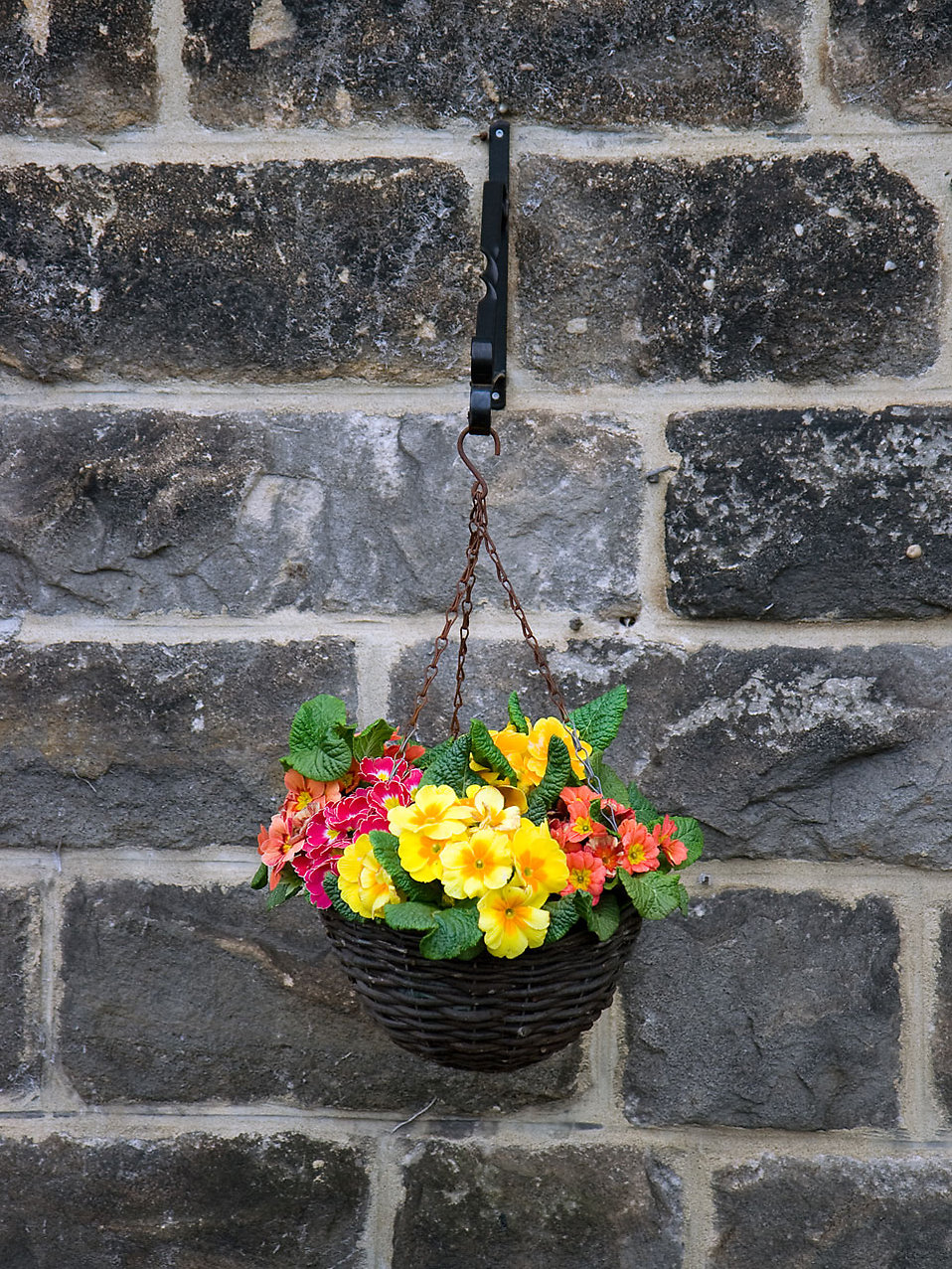 Flowers in a hanging basket by a stone wall : Free Stock Photo