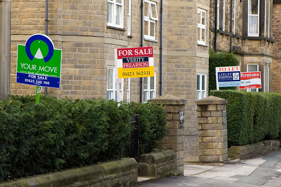 Home sale signs along a street : Free Stock Photo