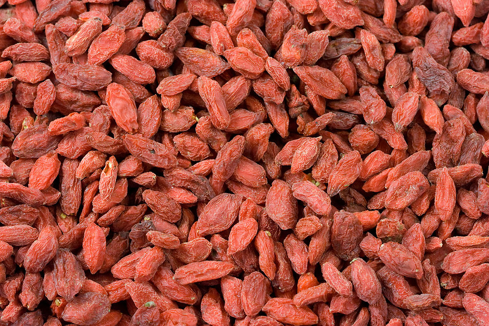 Close-up of red goji berries : Free Stock Photo