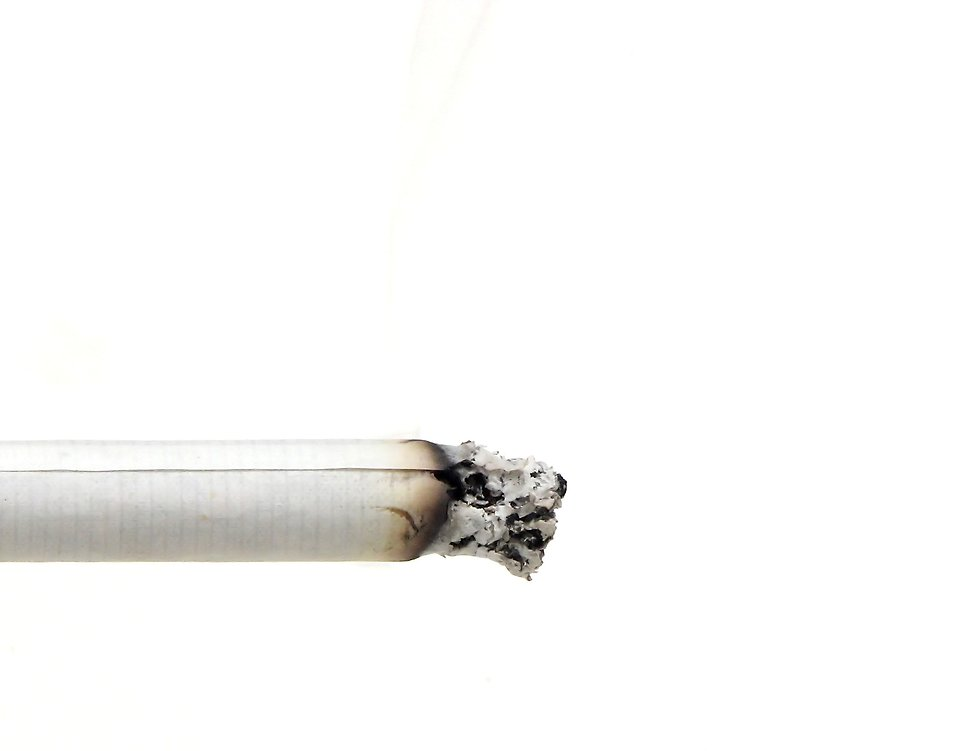 Close-up of a burning cigarette and ash : Free Stock Photo