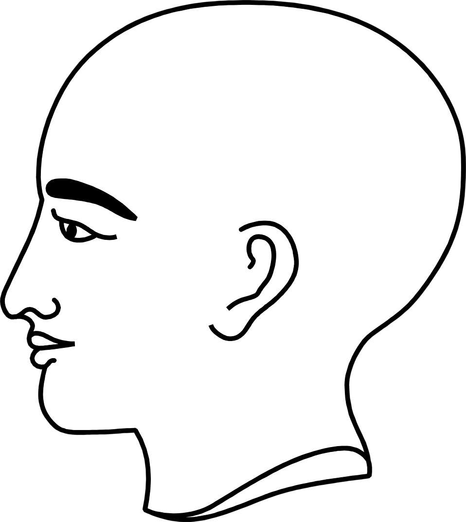 Illustration of a bald person's profile : Free Stock Photo