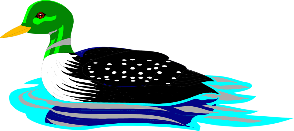 Illustration of a green headed loon : Free Stock Photo