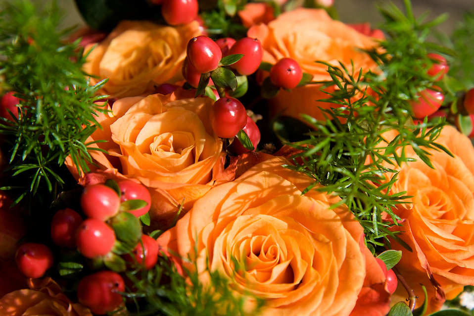 A bouquet with orange roses : Free Stock Photo