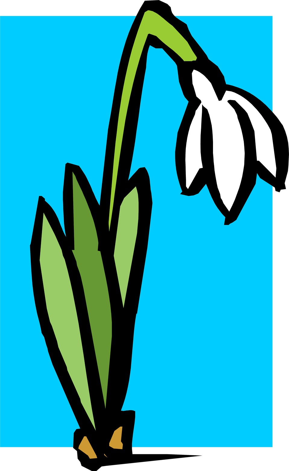 Illustration of a white flower : Free Stock Photo