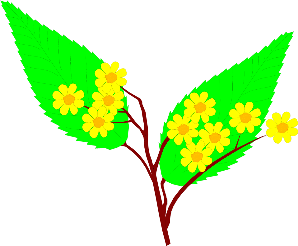 Illustration of yellow flowers with large green leaves : Free Stock Photo