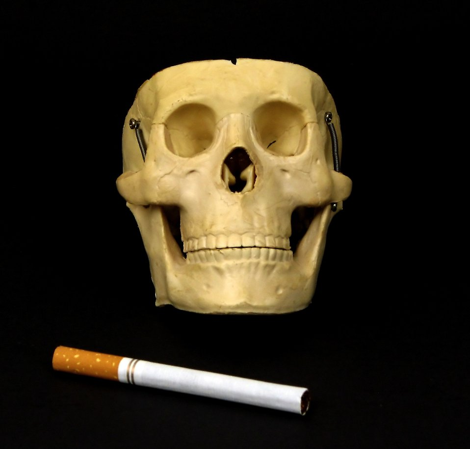 A skull with a cigarette isolated on a black background : Free Stock Photo