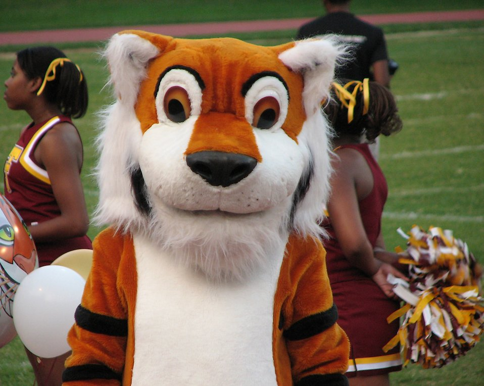 A tiger mascot and cheerleaders at a high school football game : Free Stock Photo