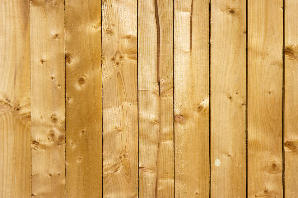 Close-up of a wood texture : Free Stock Photo